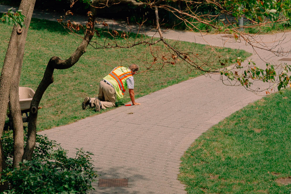 A BPCA Emploee working on a path in Battery Park City. Photo by Daniel Terna