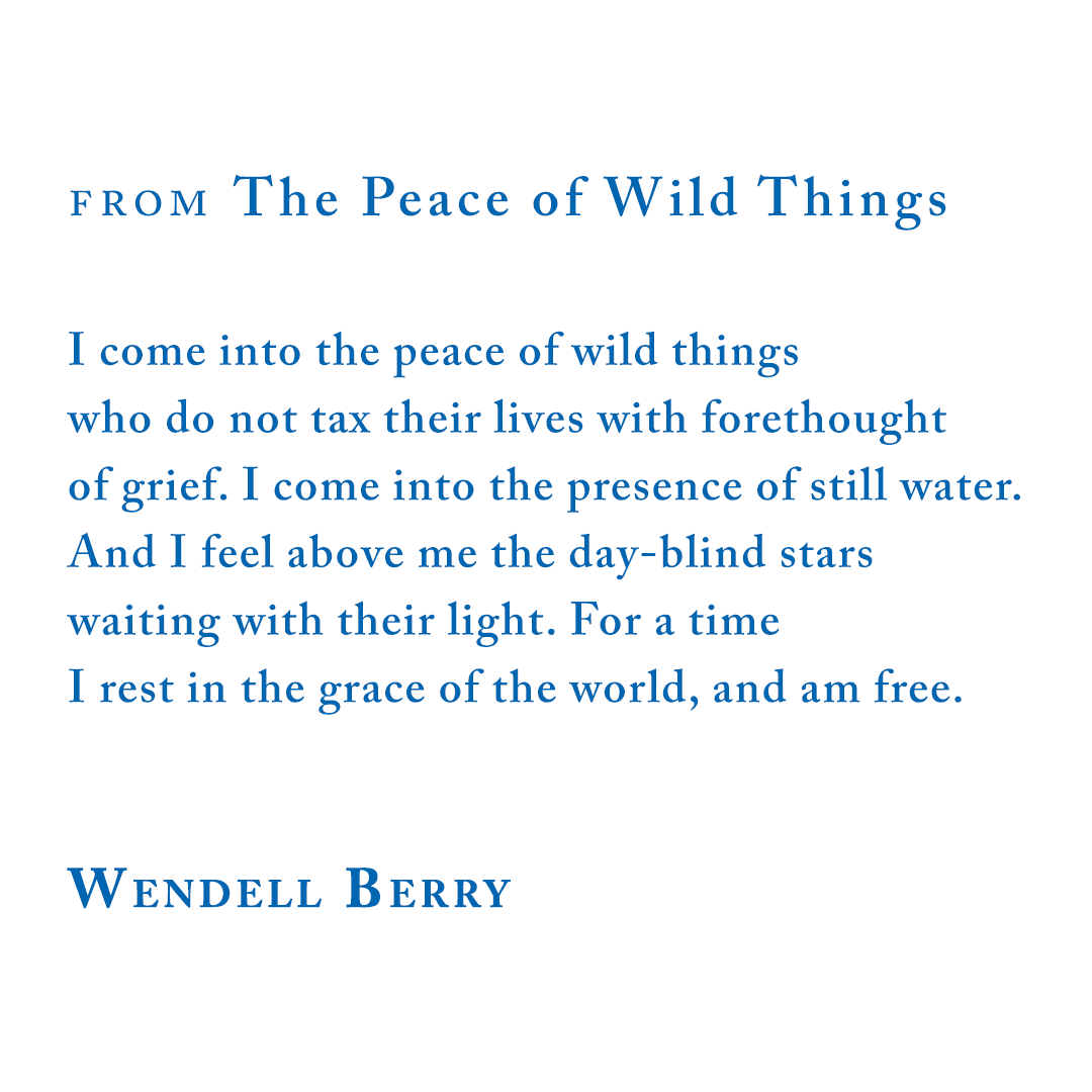 FROM The Peace of Wild Things, Wendell Berry
