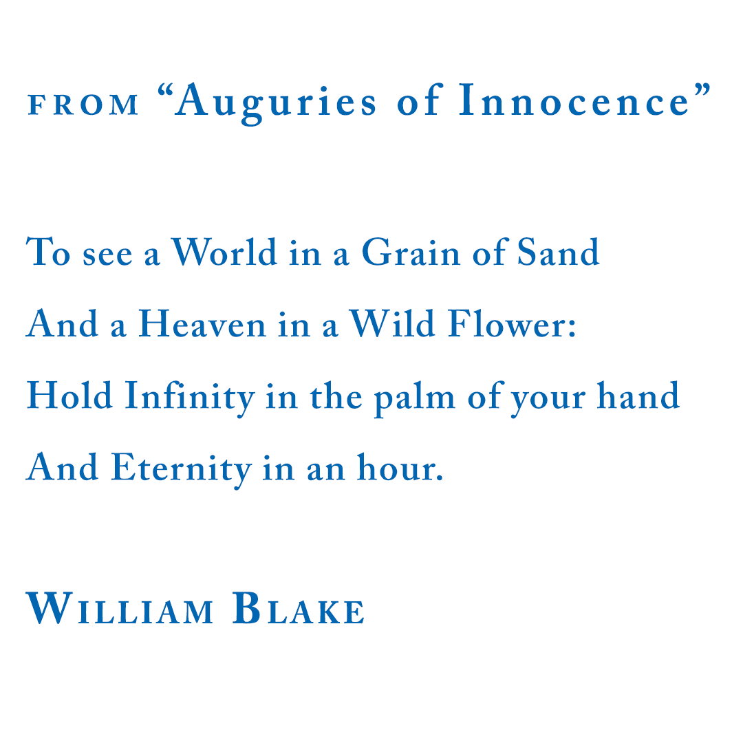 William Blake from Auguries of Innocence