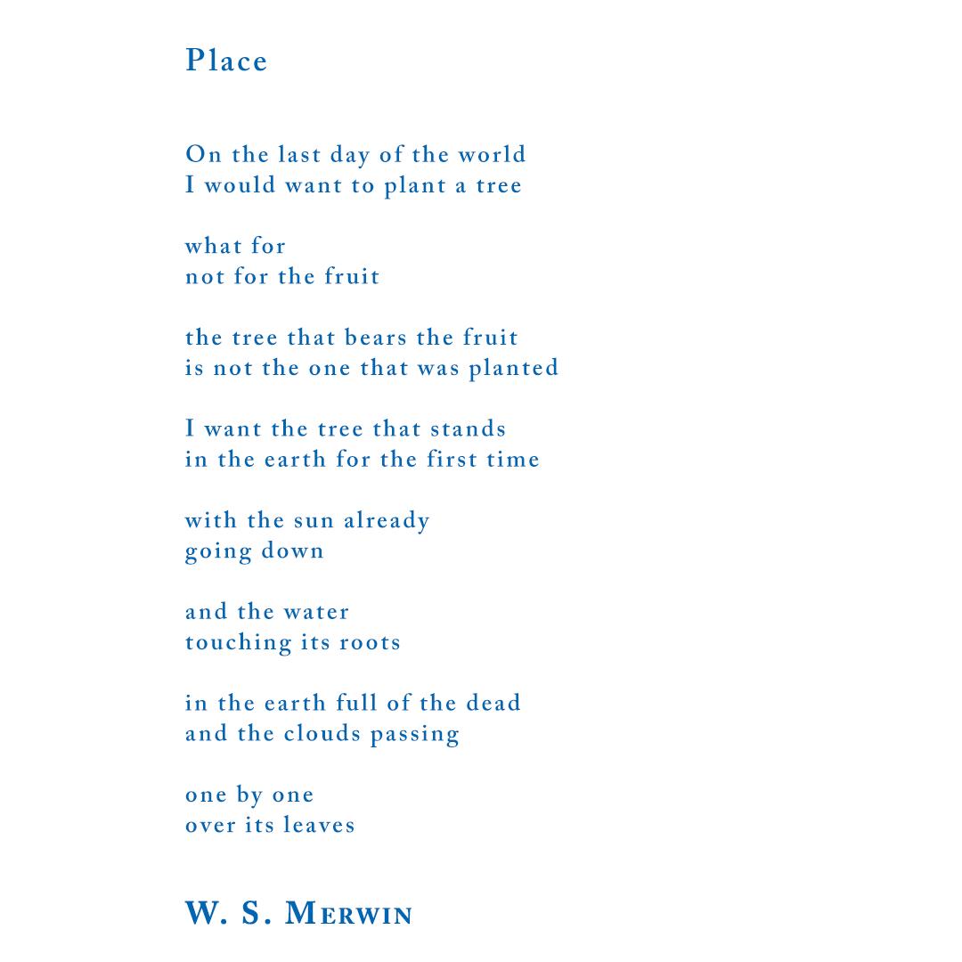 W. S. Merwin Excerpt