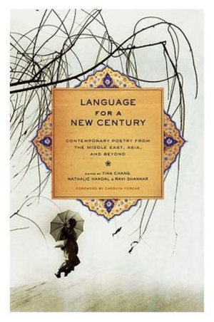 Language for a New Century book cover